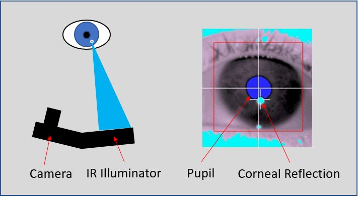 Pupil and Corneal Reflection